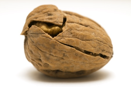walnut shell cracked