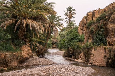 River running through mountain Dades Valley (Valley of Thousand Casbahs). Morocco, Africa