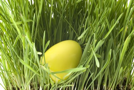 a yellow easter-egg