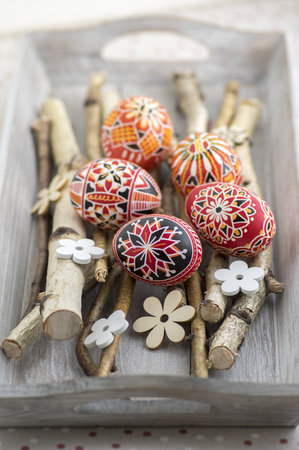 Photo for Homemade handmade painted Easter eggs on birch branches on grey wooden tray, traditional hnadcraft colorful eggs, white decorative wooden flowers - Royalty Free Image