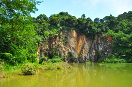 Singapore Quarry, surrounded by greenery, located in Bukit Timah nature reserve