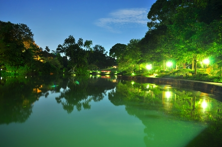 Pond surrounded by trees at Singapore Botanical Garden by night