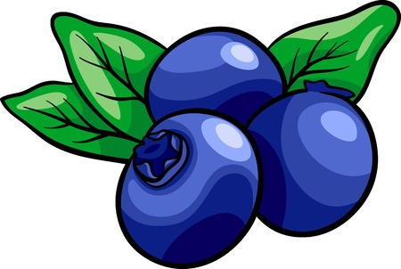 Cartoon Illustration of Blueberry Fruits Food Object