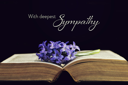 Foto de Sympathy card with flower and open book - Imagen libre de derechos