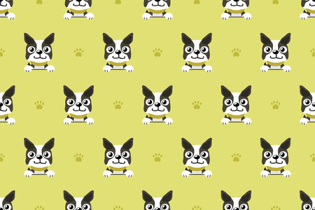 Vector Cartoon Character Boston Terrier Dog Poses Set Stock Vector -  Illustration of graphic, animal: 119386020