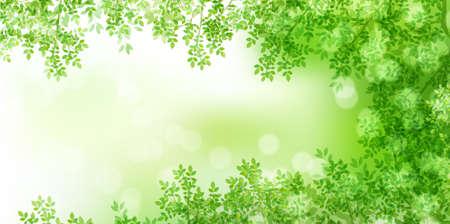 Illustration for Fresh green leaves spring background - Royalty Free Image