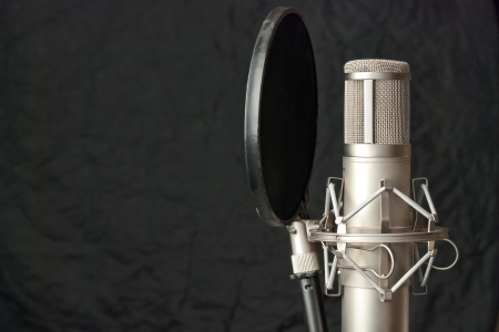 Close-up of a condenser microphone.