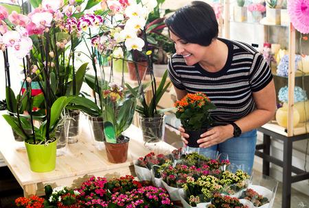 Happy mature woman florist fixing a kalanchoe calandiva flower in the floral shop