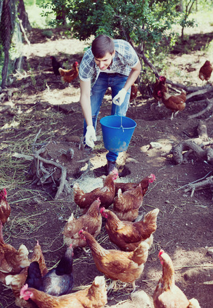smiling young man farmer strewing bird forage on country yard with chickens