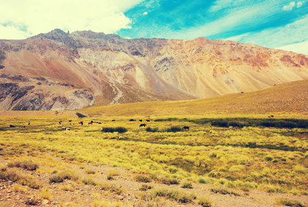 Views of Andes mountains from valley, Valle Hermoso, Argentina, South America