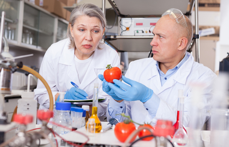 Two experienced biochemists checking fruits and vegetables for nitrates and pesticides in modern laboratory, recording experimental procedure and results