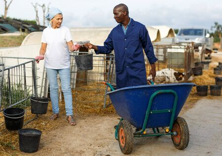 Photo pour Man farmer  with cart and woman farmer working  together at  cow farm outdoor - image libre de droit