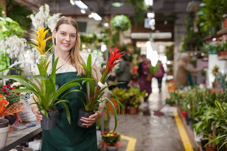 Photo for Positive woman picking a bromelia flower in the flower shop - Royalty Free Image