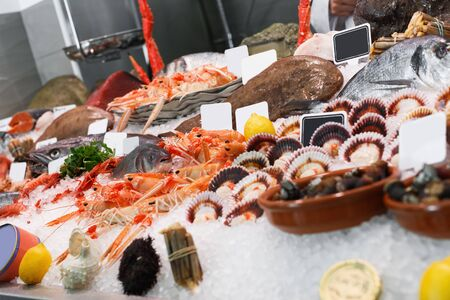 Photo pour Icy fish showcase with diversity of fresh marine products in fish restaurant - image libre de droit