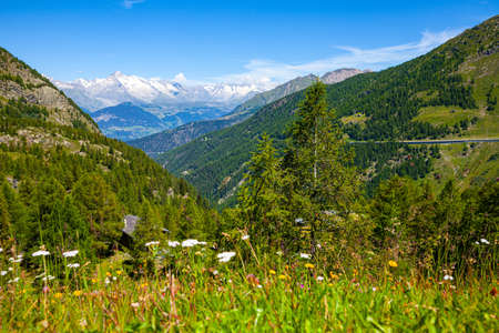 Photo for Panoramic view on Simplon pass in Switzerland - Royalty Free Image