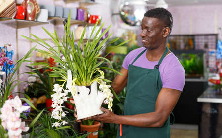 Photo for Florist inspecting potted plants - Royalty Free Image