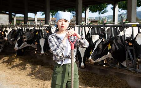 Photo pour Positive female farmer who is standing near cows at the farm - image libre de droit