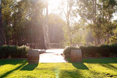 Photo pour Early morning sun flare across a river viewing deck in an Australian vineyard - image libre de droit