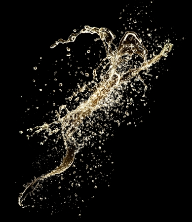 Champagne splash isolated on black background
