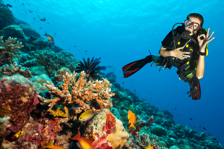 Photo pour Female scuba diver showing ok sign, explore beautiful coral reef. Underwater photography in Indian ocean, Maldives - image libre de droit