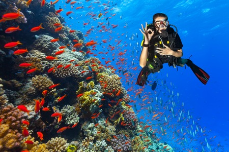 Female scuba diver showing ok sign, explore beautiful coral reef. Underwater photography in Red Sea, Egypt