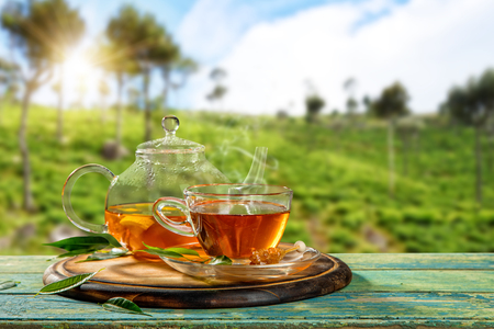 Photo pour Cup of hot tea and tea-pot served on wooden table, plantation on background - image libre de droit