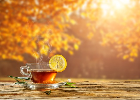 Autumn still life with tea cup on wooden planks and blur trees on background