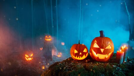 Photo pour Spooky halloween pumpkins in forest. Scary halloween background with free space for text. - image libre de droit