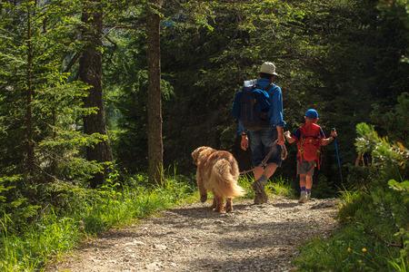Foto de Father, son and their dog walking in a summer forest - Imagen libre de derechos