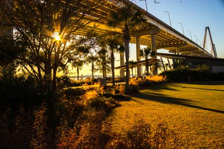sun beaming through trees in a park under a bridge