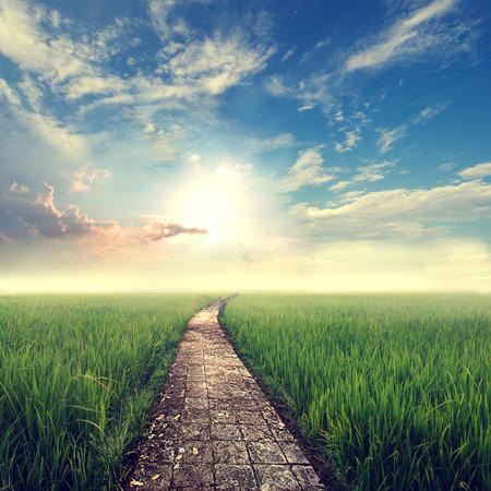 Photo pour vintage nature background,grass field with sky sun - image libre de droit