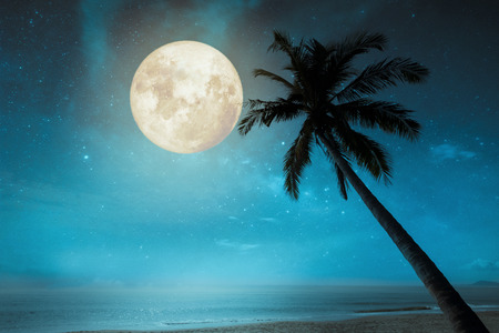 Photo pour Beautiful fantasy tropical beach with star in night skies, full moon - Retro style artwork with vintage color tone. - image libre de droit