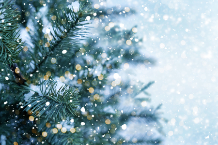 Photo pour Closeup of Christmas tree with light, snow flake. Christmas and New Year holiday background. - image libre de droit