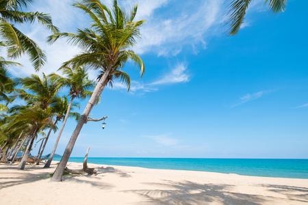 Foto de Landscape of coconut palm tree on tropical beach in summer. Summer background concept. - Imagen libre de derechos