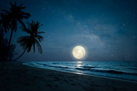 Foto de Beautiful fantasy of landscape tropical beach with silhouette palm tree in night skies and full moon - dreamlike wonder nature. - Imagen libre de derechos