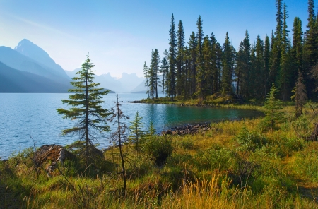 beautiful morning mood by the lake as seen in the wilderness of banff national park, alberta, canada.
