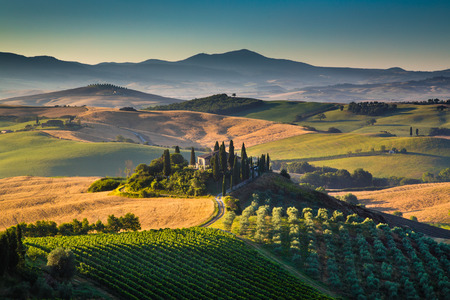 Scenic Tuscany landscape with rolling hills and valleys in golden morning light Val d Orcia