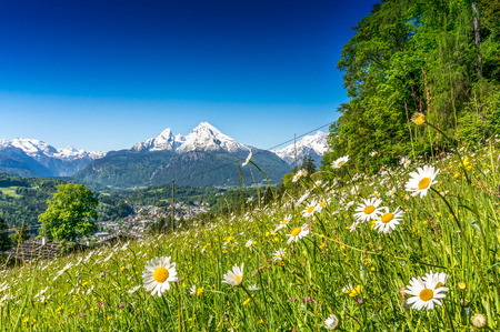 Foto per Idyllic landscape in the Alps with fresh green mountain pastures in springtime - Immagine Royalty Free