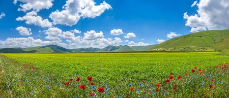 Photo pour Beautiful summer landscape at Piano Grande Great Plain mountain plateau in the Apennine Mountains, Castelluccio di Norcia, Umbria, Italy - image libre de droit