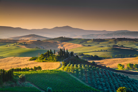 Foto de Scenic Tuscany landscape with rolling hills and valleys in golden morning light, Val d'Orcia, Italy - Imagen libre de derechos