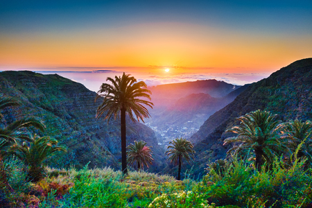 Beautiful view of amazing tropical scenery with exotic palm trees and mountain valleys above wide open sea in golden evening light at sunset with blue sky and clouds in summer, Canary Islands, Spain