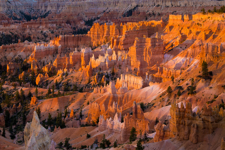 Classic view of famous Hoodoos sandstone formations at Bryce Canyon National Park in beautiful golden morning light at sunrise seen from famous Sunrise Point in summer, Utah, American Southwest, USA