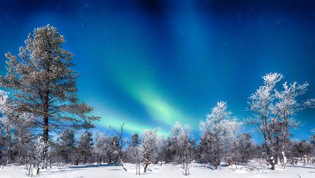 Photo for Panoramic view of amazing Aurora Borealis northern lights over beautiful winter wonderland scenery - Royalty Free Image
