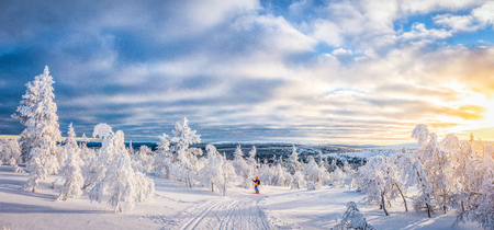 Panoramic view of young man cross-country skiing on a track in beautiful winter wonderland scenery in Scandinavia with scenic evening light at sunset in winter, northern Europe