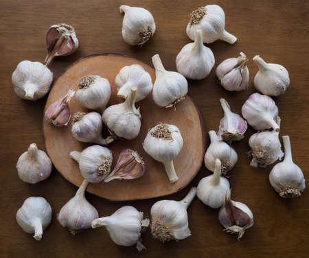 Foto für Fresh organic vegetable garlic, food ingredient - Lizenzfreies Bild