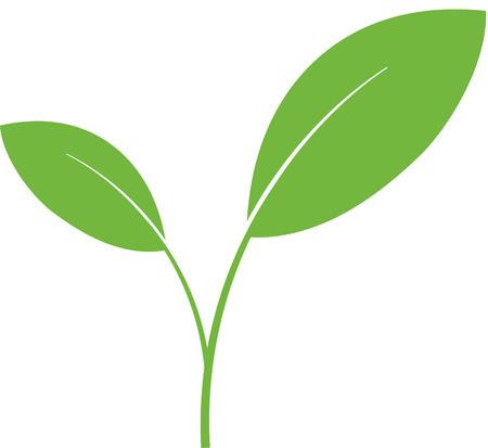 Illustration pour Plant green shoot - image libre de droit