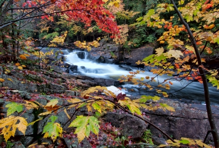 River framed by colorful autumn leaves of many different colors