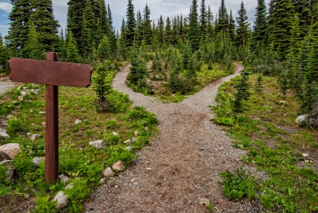 Foto de Showing a path splitting into two going into the woods with a blank signpost  - Imagen libre de derechos