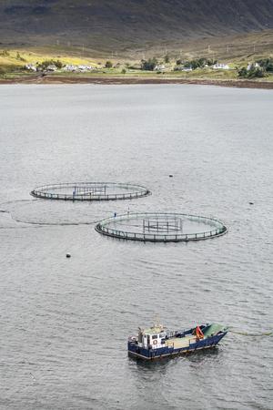 Salmon Farming on Loch Ainort on the Isle of Skye in Scotland.