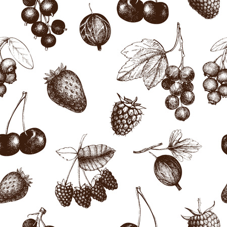 Illustration pour Decorative pattern with hand drawn vintage wild and garden berries. Vintage fruit and berry seamless background isolated on white - image libre de droit